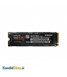 SAMSUNG 960 Evo 250GB PCIe NVMe M2 SSD Drive