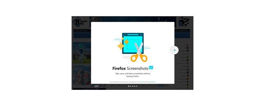 نحوه گرفتن اسکرین شات از صفحات وب